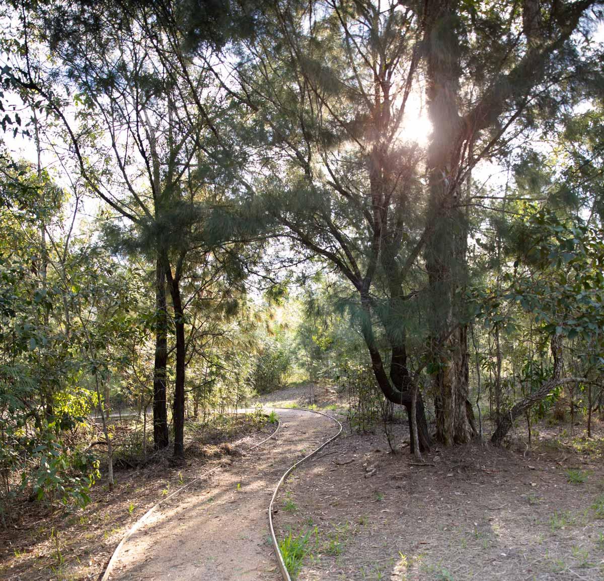 Fina-Bush-Walk